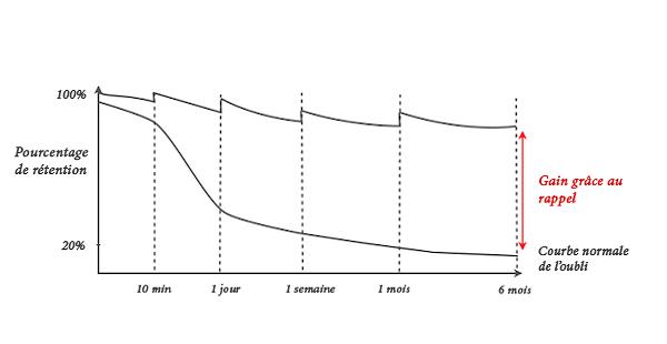 la-courbe-de-loubli-apprendre-efficacement